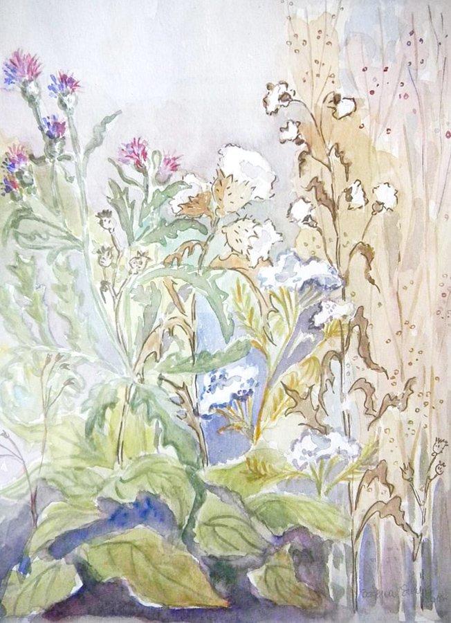 Kwiaty na łące akwarela Bożena Szenk